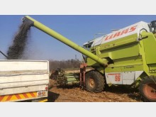 S2755 Green Claas Dominator 96 Pre-Owned Other